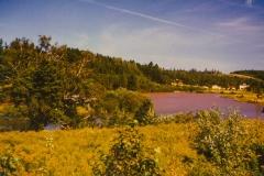 north-granville-view